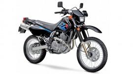 Zylinder Suzuki - DR
