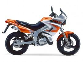 Zylinder Yamaha - TDR