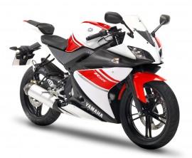 Zylinder Yamaha - TZR